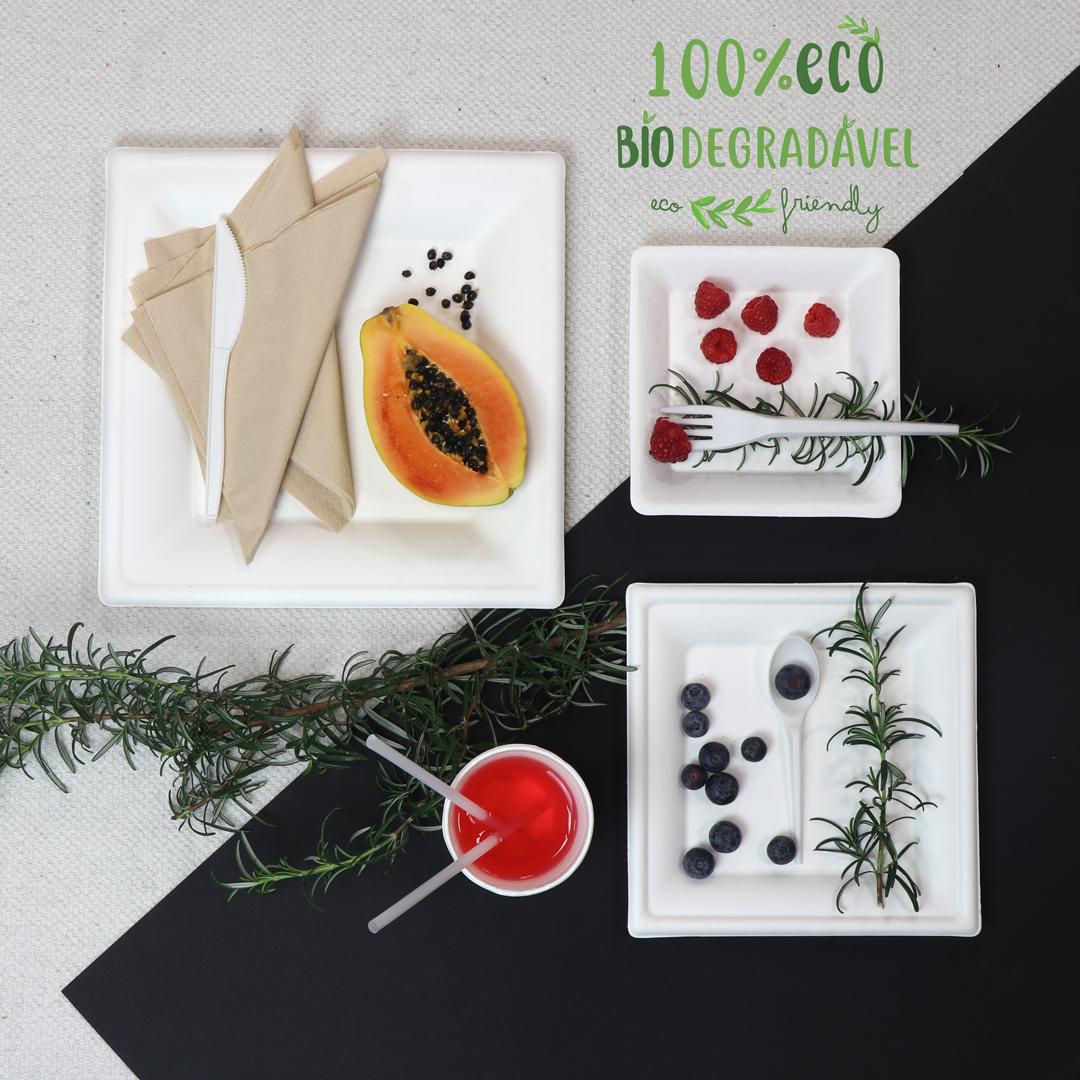 eco friendly cana de açúcar